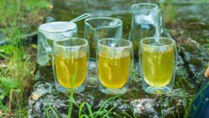 Po jakim czasie można zrobić następne parzenia zielonej herbaty?