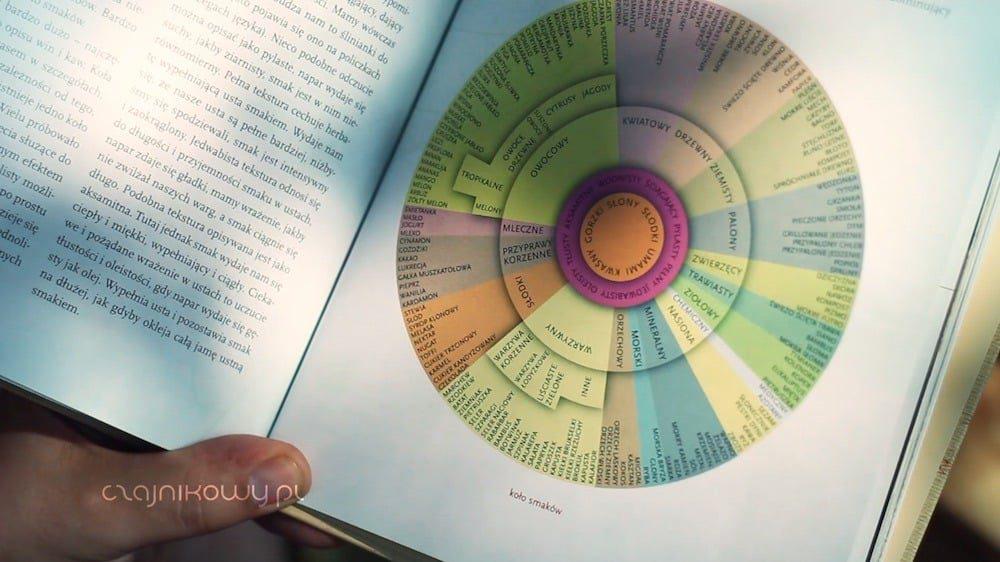 Jak opisać smak herbaty? Porady - analiza sensoryczna (część 3): koło smaków