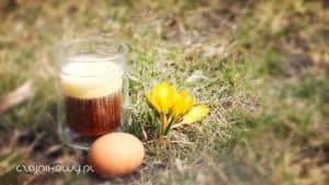 Przepis na kawę z koglem moglem (jajkiem) i mleczkiem w tubce