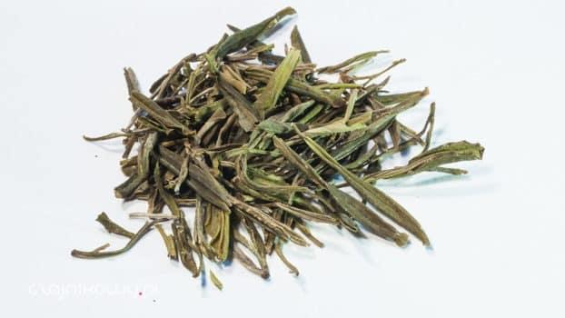 Zielona herbata – naturalny lek na nowotwór?