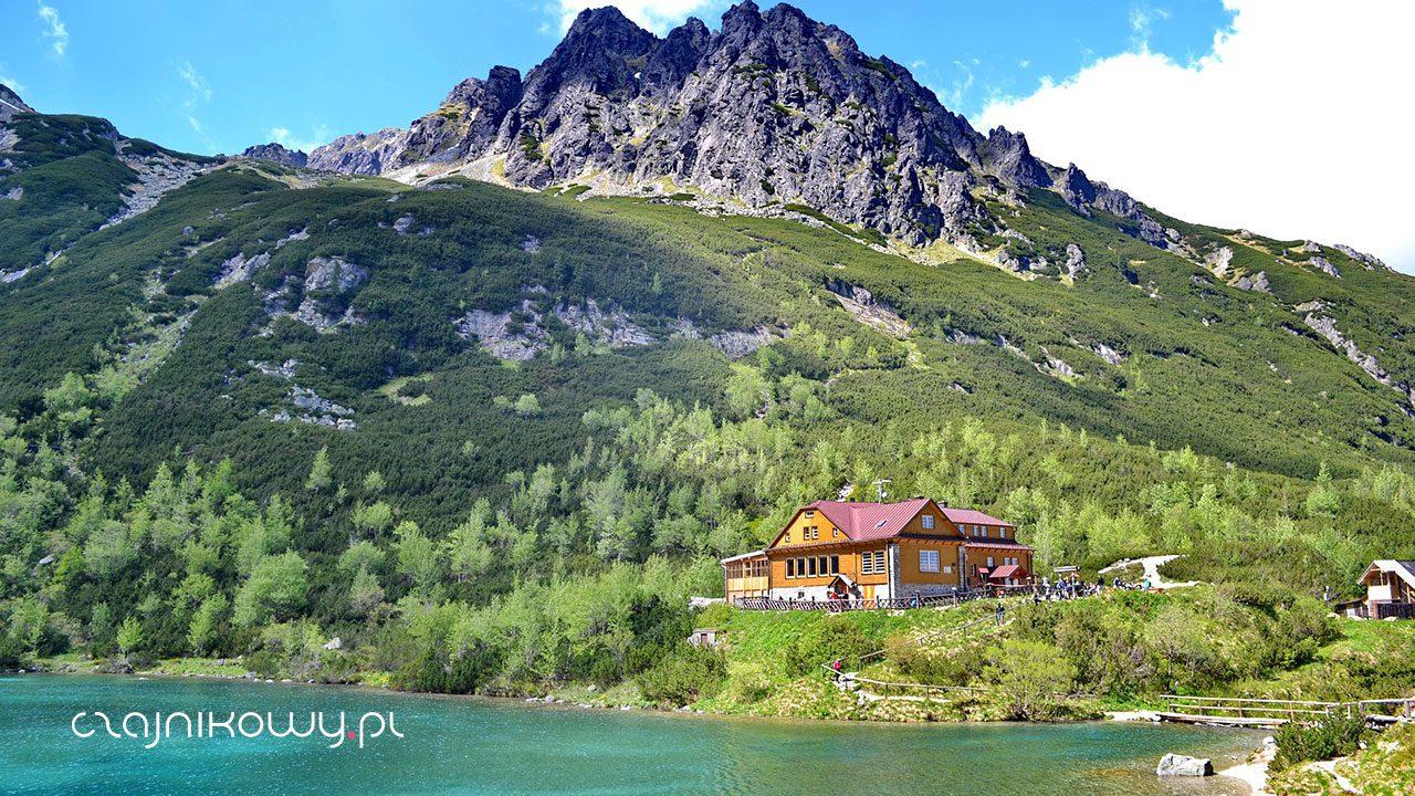 Herbata w górach: czajnikowy lifestyle