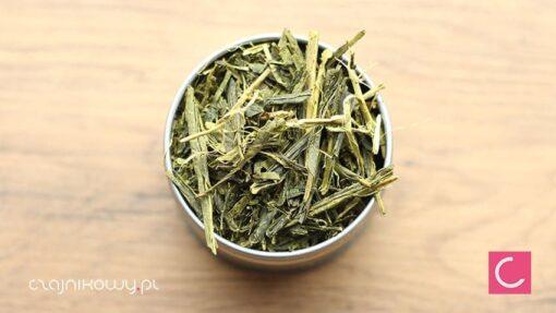 Herbata zielona Japan Bancha Isecha