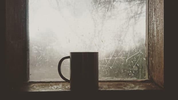 Co zawiera herbata? Skład herbaty