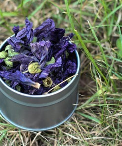 Herbata ziołowa malwa (Malva sylvestris) 25g