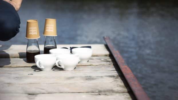 Arabica vs robusta - różnice i właściwości kawy