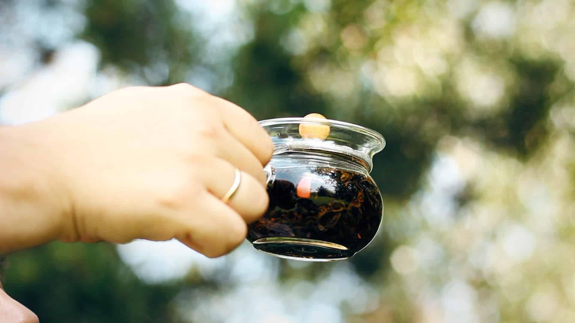 Szlachetna herbata produkowana z udziałem koników polnych