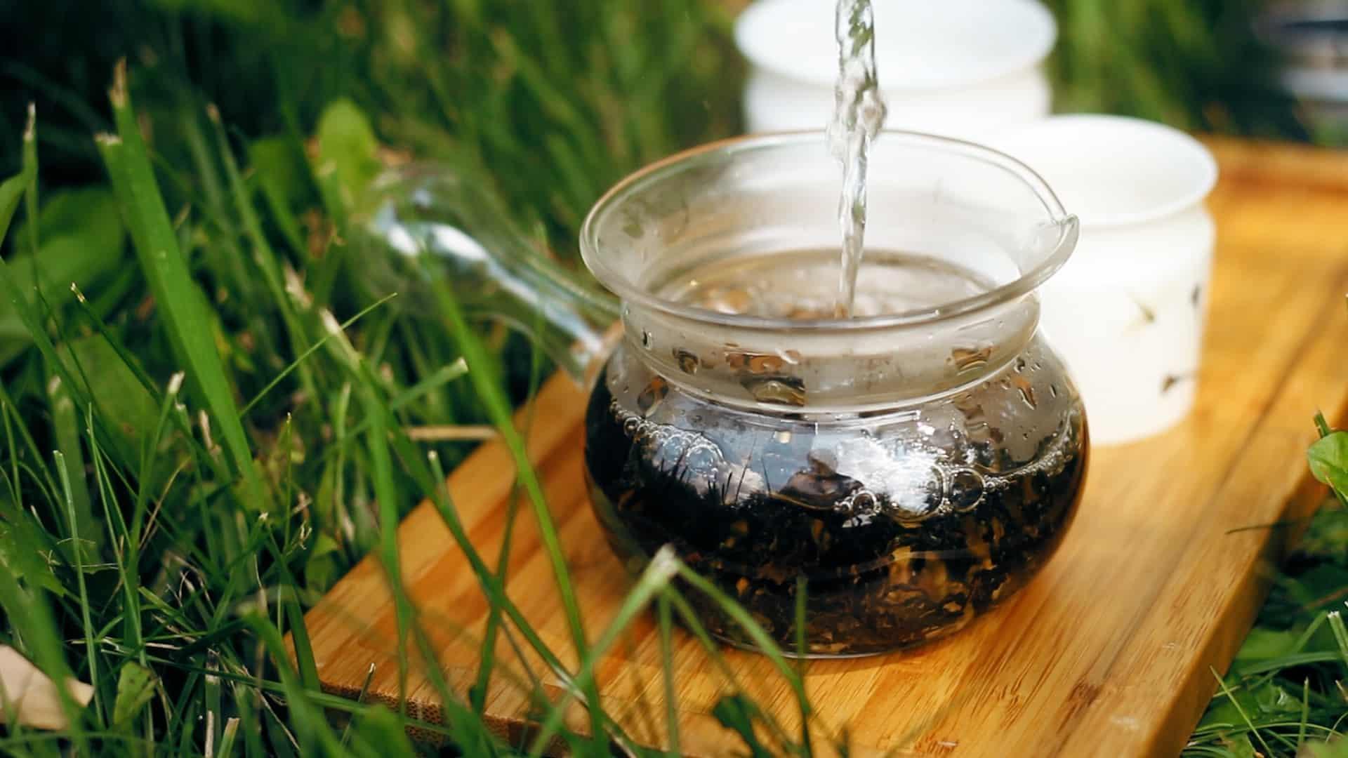 Szlachetna herbata produkowana z udziałem koników polnych: parzenie