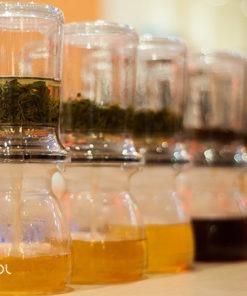 Warsztaty 6 kolorów herbaty 18.11.18 (Warszawa)