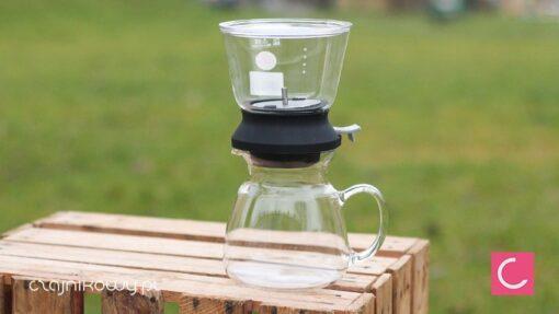 Zaparzacz szklany do herbaty Hario Tea Dripper 350ml Largo