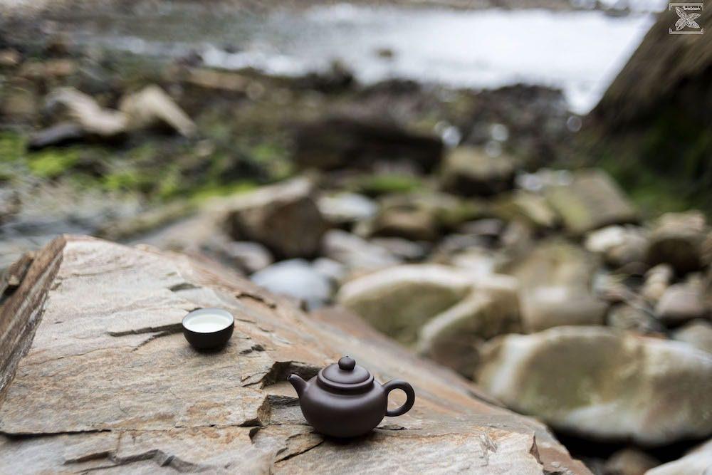 Biała herbata Snow Buds Leopard Premium: parzenie w terenie