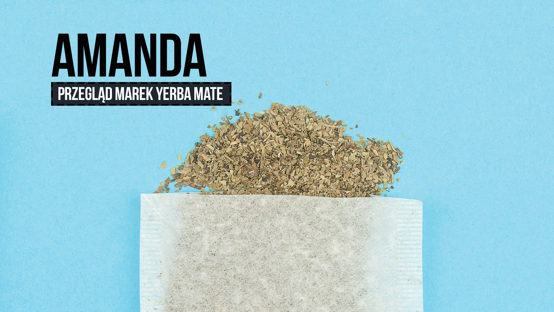 Przegląd yerba mate: Amanda (ostrokrzew paragwajski)