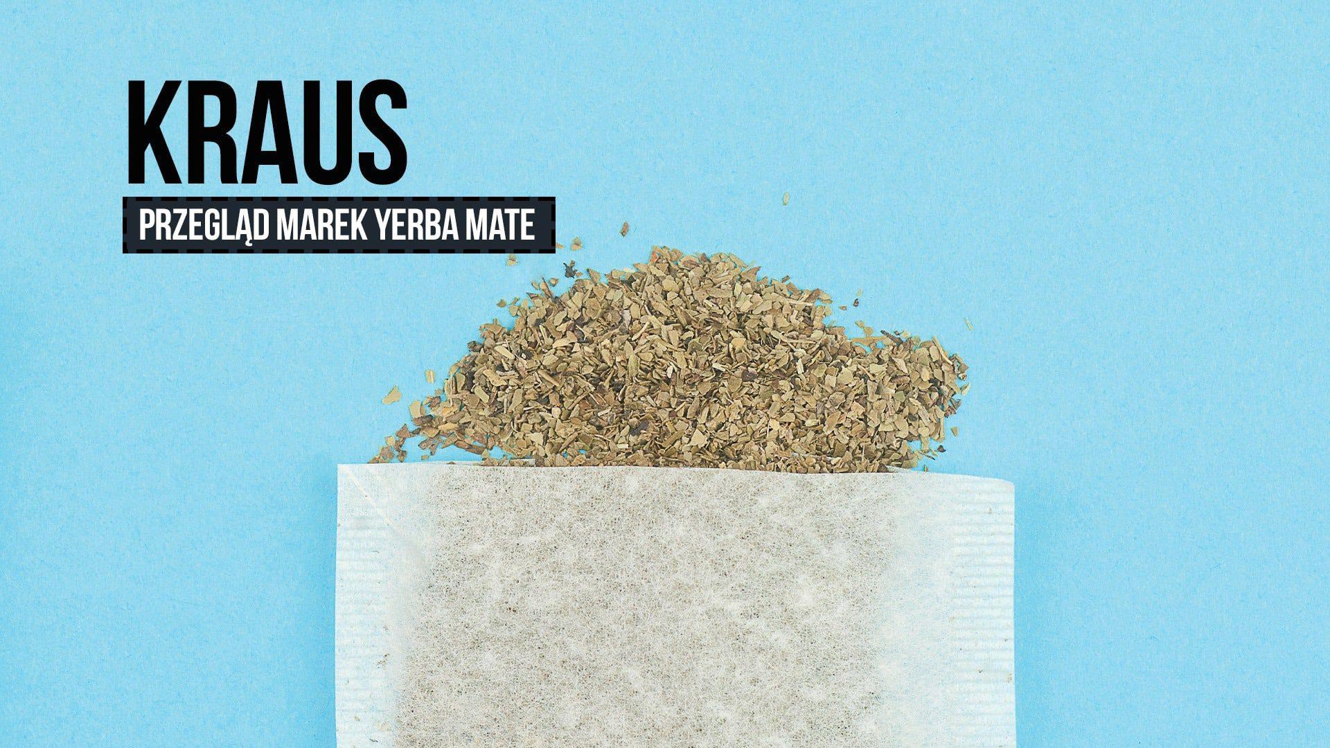 Przegląd yerba mate: Kraus (ostrokrzew paragwajski)