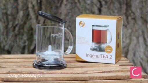 Najlepszy dzbanek do herbaty IngenuiTEA 2: pudełko