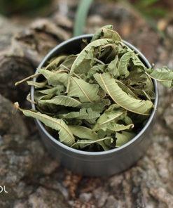 Herbata ziołowa werbena cytrynowa