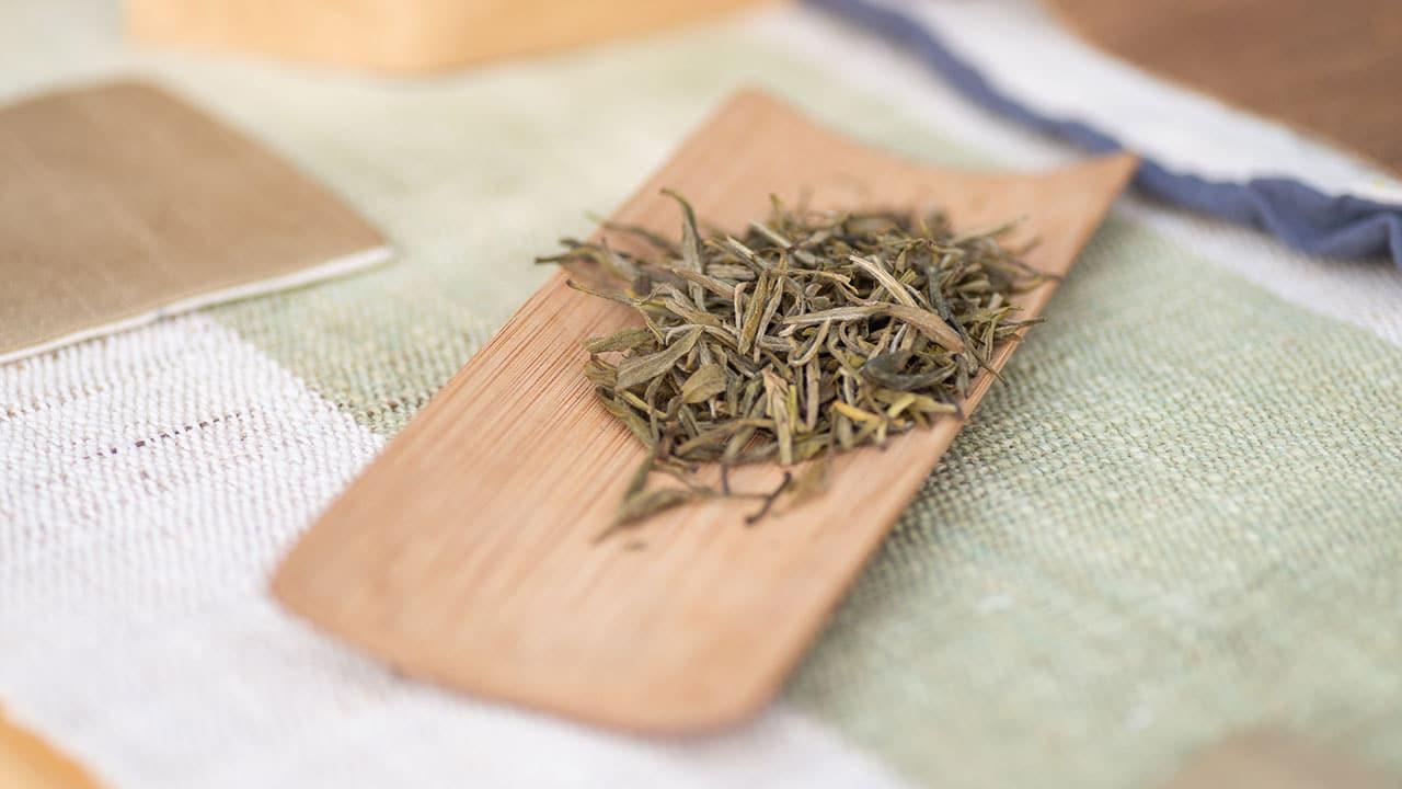Trendy w herbacie 2019