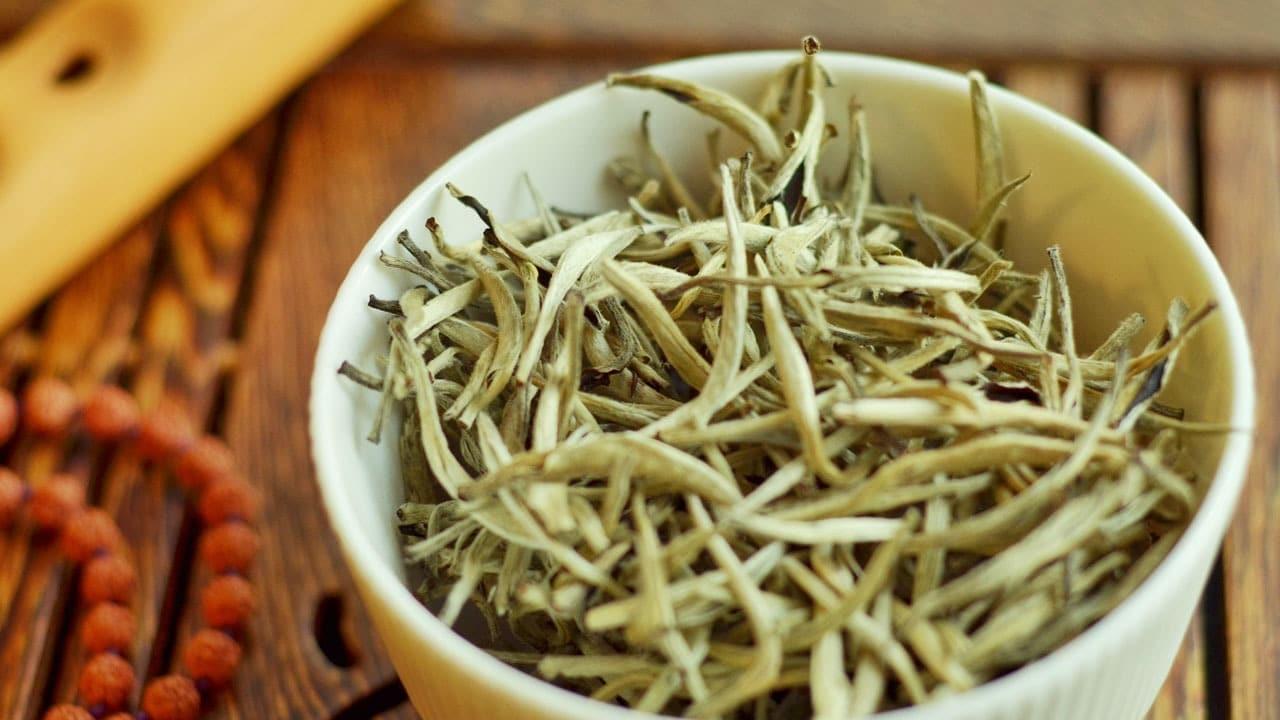 Dlaczego cenimy puszek na herbacianych pączkach?