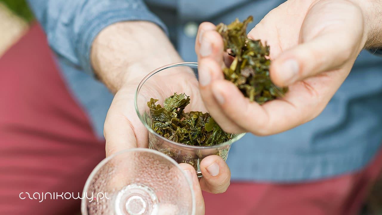 Zielona herbata a ciśnienie