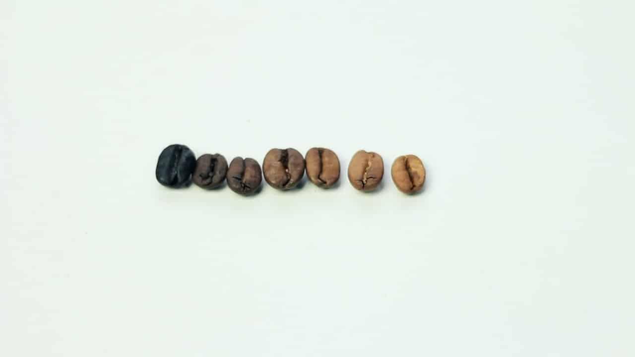 Kolory palenia kawy. Kolorymetr