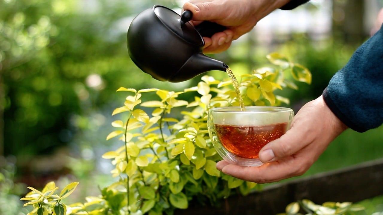 Benifuki, japońska czarna herbata